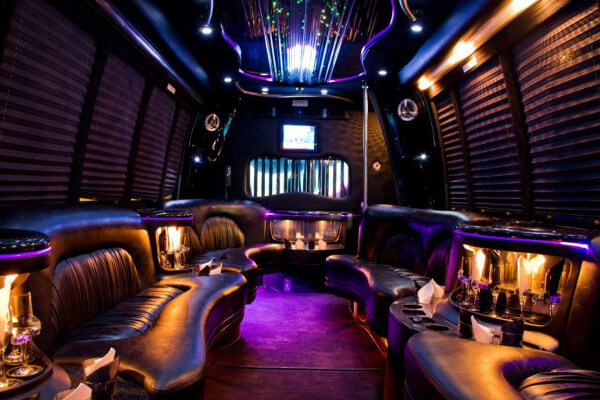 15 Person Party Bus Rental Chula Vista